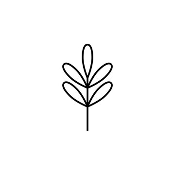 acacia icon. Element of nature icon for mobile concept and web apps. Thin line acacia icon can be used for web and mobile