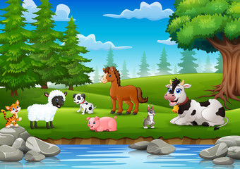 Farm animals are enjoying nature by the river