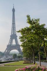 Eiffel Tower from Trocadéro Gardens