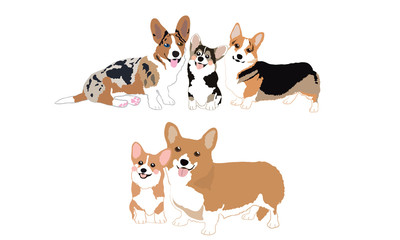 Cute Welsh Corgi Dogs Cartoon Vector