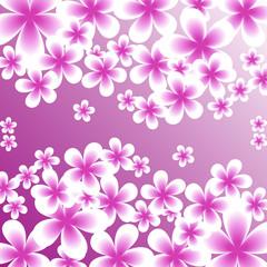 Bright floral design, postcard, invitation, drawing for textiles. Vector illustration