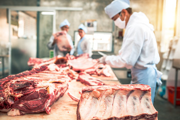 Butcher group and friends works in a slaughterhouse and cuts raw beef