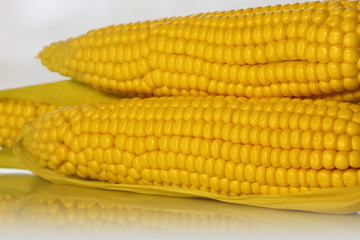 corncobs are reflected in the glass; snapshot on a white background