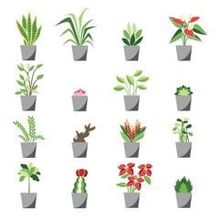 植物 木 グリーン ナチュラルアイコン