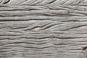 Dry weathered gray wooden plank texture