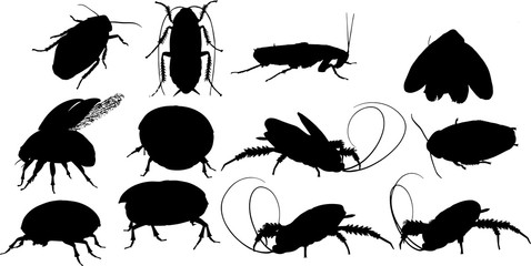 ゴキブリのシルエット