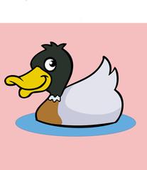cartoon duck icon vector drawing
