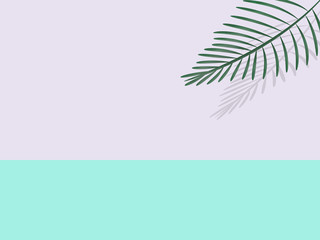 text area in pink and mint with exotic palm leaf in 3D with shadow