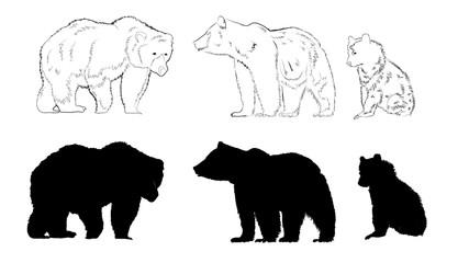 Wild animals silhouette, bear