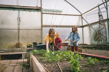 Kids helping mother in greenhouse plantation