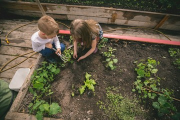Kids planting seed in greenhouse