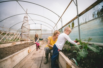 Mother and kids gardening in greenhouse