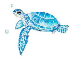 Fotorolgordijn Schildpad Big sea turtle watercolor painting, Sea life. watercolor sea turtle isolated on white background