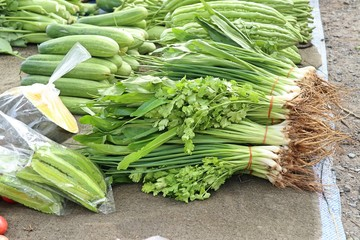 Spring onions and coriander at market
