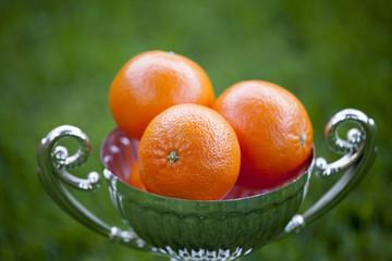 Mandarin Silver cup Summer Garden