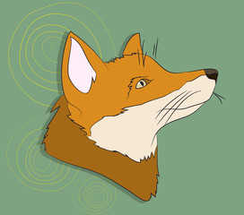 portrait of fox, vector, on green background