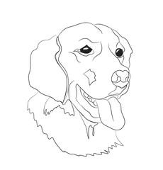 dog portrait, lines, vector