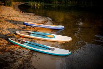 Three sup boards lying near the water on the lakeside on the sunset
