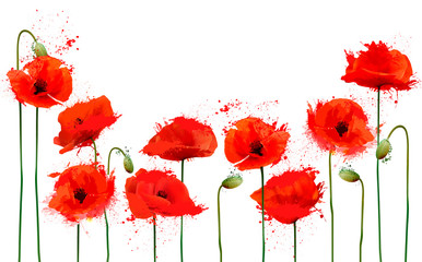 Wall Mural - Beautiful abstract  background with red poppies flowers. Vector.