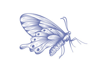 butterfly icon symbol vector illustration