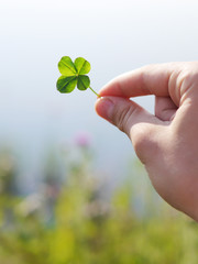 Four-leafed clover in hand.