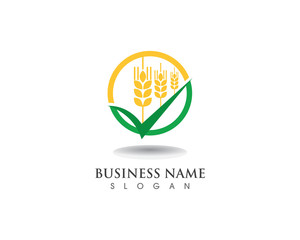 wheat Logo and symbols Template vector icon design