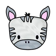 cute zebra icon over white background, vector illustration