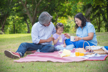Asian Grandparents spend time in holiday with granddaughter by picnic at park.
