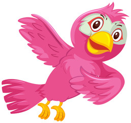 A pink bird on white background