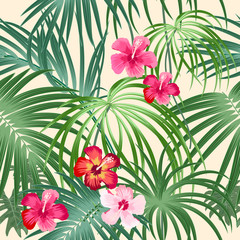 Tropical plant seamless pattern, tropical leaves of palm tree and flowers.