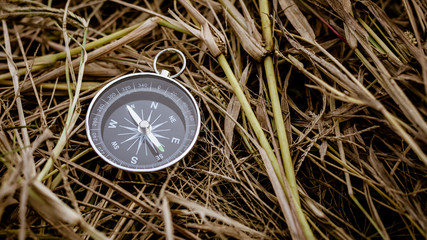 compass on a dry straw. - background
