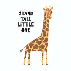 Hand drawn vector illustration of a cute funny giraffe, with lettering quote Stand tall little one. Isolated objects on white background. Scandinavian style flat design. Concept for children print.