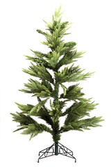 christmas tree isolated white.