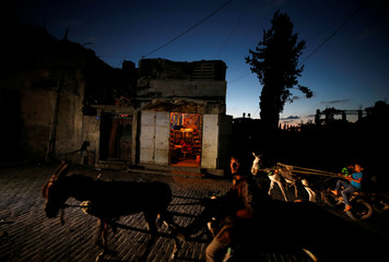 Palestinians ride donkey-drawn carts during power cut in the northern Gaza Strip