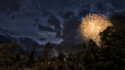 Fireworks in the woods and mountains night landscape