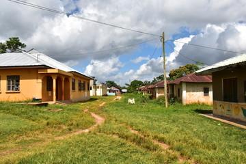 backyard streets spice farm sansibar