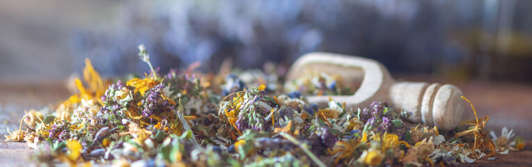 Banner for homeopathy: close up of dryed herbs and blooms