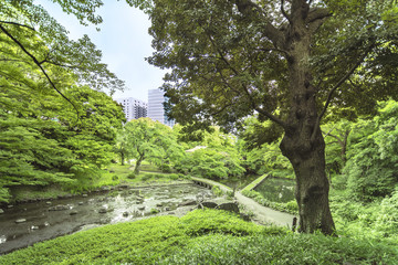 Landscape of the Koishikawa Korakuen Garden in Tokyo with the small Togetsu Bridge, Oi River and the Seiko Lake dam.