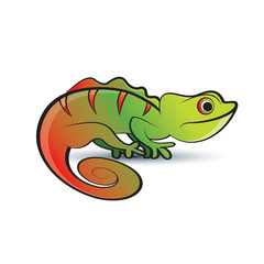 colorful chameleon on smooth shadow vector drawing