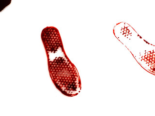 Bloody shoeprint