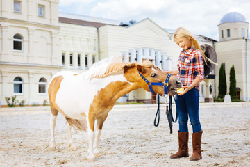 Feeding pony. Blonde-haired smiling cowboy girl feeling extremely cheerful while feeding her little...