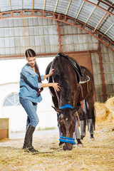 Near horse. Smiling good-looking female rider wearing stylish denim clothes standing near her horse in stable