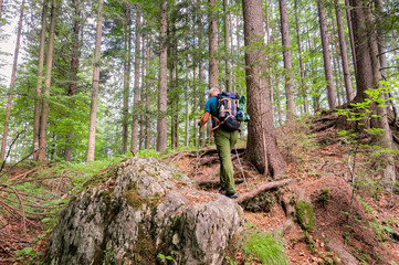 Hiker with backpack  walks on the forest path.