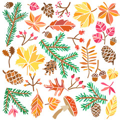 Vector autumn forest nature illustration hand drawn set
