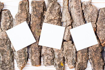 White square sheets for writing lie on pieces of bark of a tree