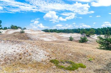 Gray dunes in Slowinski National Park in Poland.