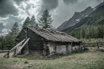 Cabin in alps forest mountain