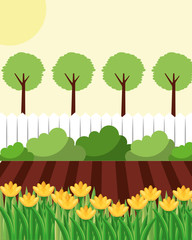 backyard with flowers garden fence and trees vector illustration