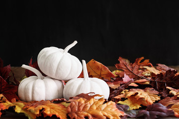 Fall Leaves and White Mini Pumpkins