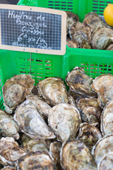 Fresh Bouzigues oysters on sale at Agde local market, one of france typical seafood.